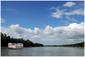 Sunderban tour from kolkata